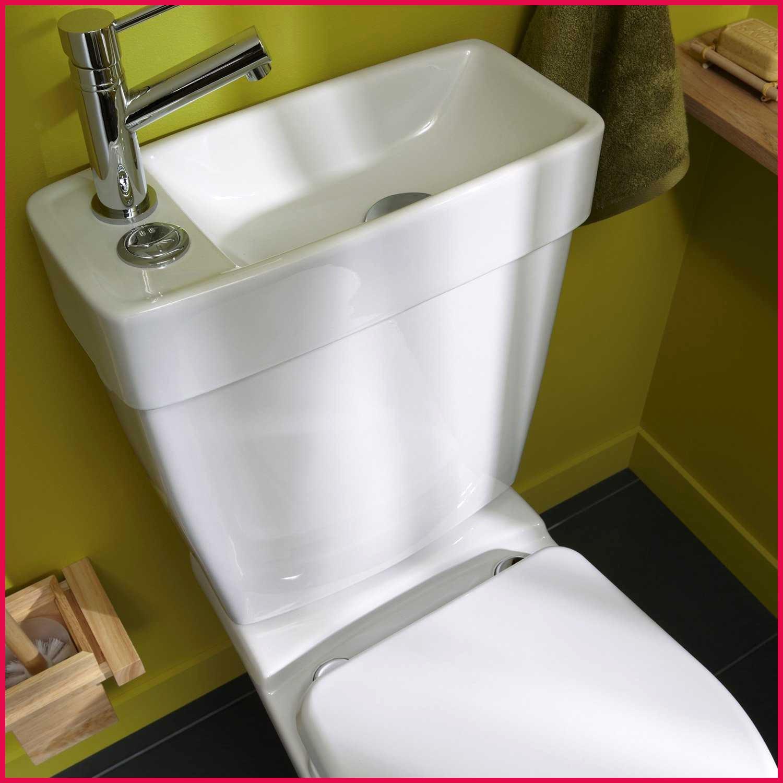 Doubler Arrivée D Eau Double Vasque combiné lavabo w.c. le duo révolutionnaire dans le milieu du